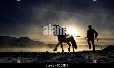 Trainer mit Islandpferd an der blauen Lagune, Island - Stockfoto