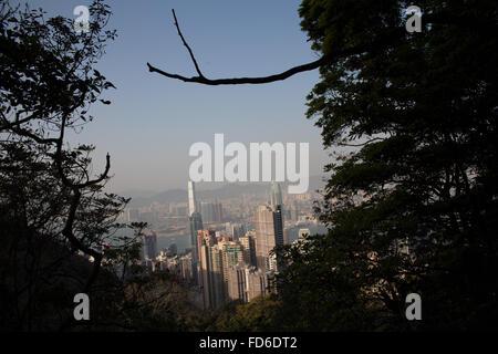 Gebäude, die durch Bäume gegen klaren Himmel gesehen - Stockfoto