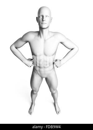 Anatomie eines Mannes stehend mit Händen auf den Hüften, Abbildung. - Stockfoto