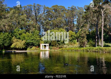 Spreckels See im Golden Gate Park, San Francisco, Kalifornien, USA - Stockfoto