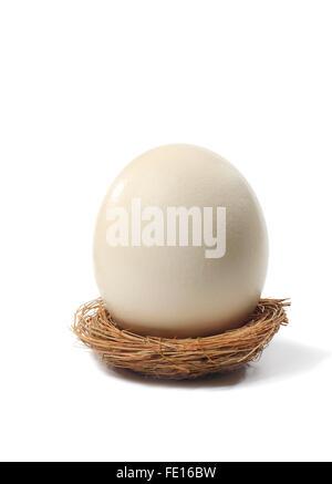 Studioaufnahme von ein großes Ei in einem Vogelnest auf einem weißen Hintergrund. - Stockfoto