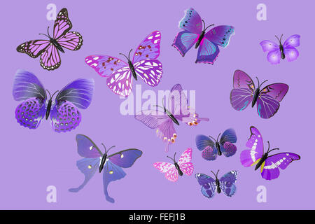 Sammlung von lila Fantasie Schmetterlinge ClipArt isoliert - Stockfoto