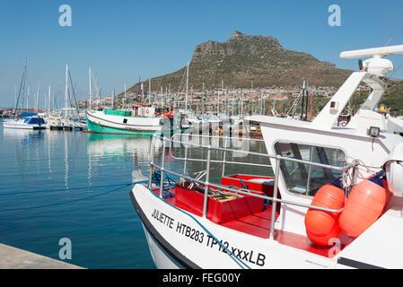 Angelboote/Fischerboote im Hafen von Hout Bay, Kap-Halbinsel, Stadtverwaltung von Kapstadt, Westkap, Südafrika - Stockfoto
