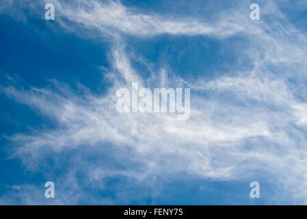 Cirruswolken. Weiß und wispy mit Stuten Geschichten gegen blauen Himmel - Stockfoto