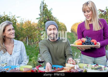 Gruppe von Freunden auf Gartenparty mit Weinberg im Hintergrund - Stockfoto