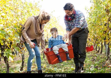 Mutter und Vater mit ihrem Sohn im roten Feld durch Weinberg - Stockfoto