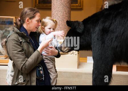 Mutter Mutter Kleinkind Baby treffen eine Bär Ausstellung Display Ausstellung Ausstellung im Oxford University Museum - Stockfoto
