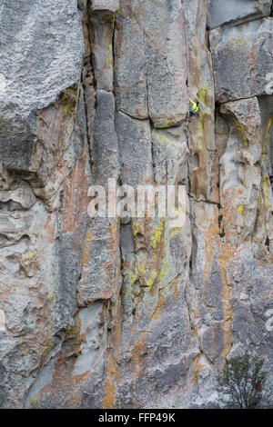 Jenn Krogue klettert eine Route dünne Scheibe bezeichnet, bewertete 5.10a bei City of Rocks - Stockfoto