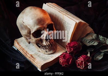 Stillleben mit menschlichen Schädel - Stockfoto