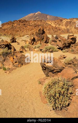 Wüstenlandschaft im Teide Nationalpark auf Teneriffa, Kanarische Inseln, Spanien. Fotografiert an einem sonnigen - Stockfoto