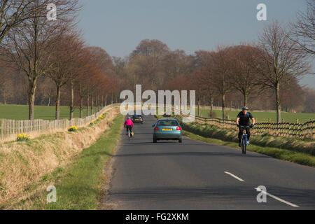 Reisen Sie an einem sonnigen Tag, zwei Autos und zwei Radfahrer auf dem Fahrrad auf einem malerischen, gerade, flache, - Stockfoto
