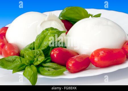 Italienische Küche Mozzarella Büffel mit Tomate - Stockfoto