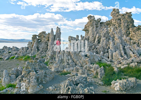 Mono-Becken szenische AreaInyo National ForestCalifornia - Stockfoto
