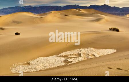 Erodierte und rissig Tonformationen an flachen Mesquite Dünen, Amargosa Strecke in Dist bei Sonnenaufgang im Death - Stockfoto