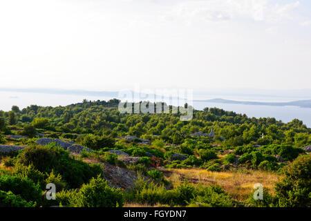 Kroatien, Insel Hvar, Hvar Amfora grand Beach resort ...
