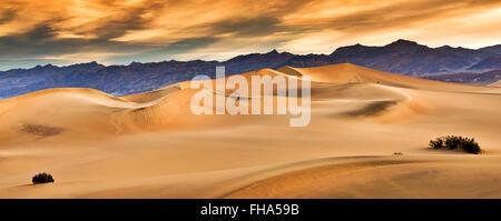 Fotograf, Wandern in weiter Ferne an flachen Mesquite Dünen Amargosa Strecke hinter Sonnenaufgang in Death Valley, - Stockfoto