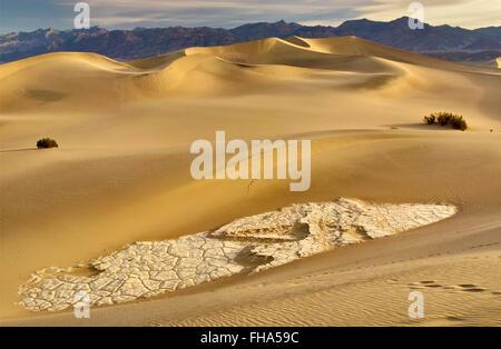Erodierte und rissig Tonformationen, Mesquite flache Sanddünen Amargosa Palette in Ferne bei Sonnenaufgang im Death - Stockfoto
