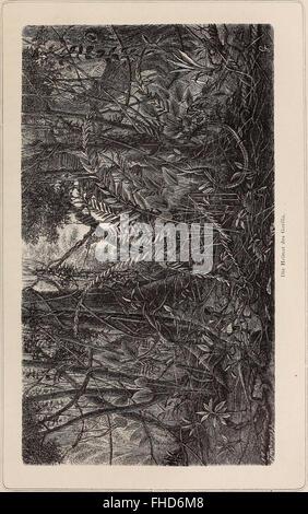 Sterben Sie Loango-Expedition Ausgesandt von der Deutschen Gesellschaft Zur Erforschung Aequatorial-Afrikas, 1873-1876. Ein Reisewerk in Drei Abtheilungen (1888)