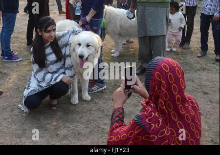 Pakistanische Volk mit ihren Haustieren, die Teilnahme an