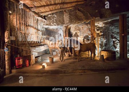 Europa, Polen, Salzbergwerk in Wieliczka, Zugpferde im Untergrund stabil, UNESCO-Weltkulturerbe - Stockfoto