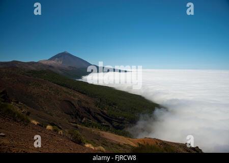 Geographie/Reisen, Spanien, Teneriffa, Landschaften, Teide Nationalpark, mit den Teide Vulkan hinter, Additional - Stockfoto