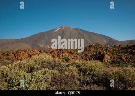 Geographie/Reisen, Spanien, Teneriffa, Landschaften, während der Aufstieg auf den Berg Guajara, Additional-Rights - Stockfoto