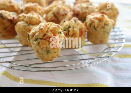 Hausgemachte Mini-Ei-Muffins Mini Quiche, selektiven Fokus Stockfoto