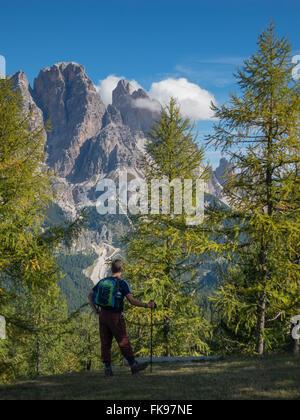 David bewundern, Monte Cristallo, Dolomiten, Provinz Belluno, Region Venetien, Italien - Stockfoto