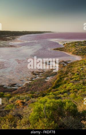 troopy an den Ufern der Lagune rosa Hutt im Port Gregory, West-Australien - Stockfoto