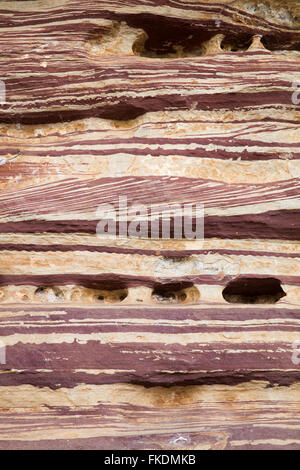 Gesteinsschichten in der Murchison River Gorge bei Ross Graham, Kalbarri National Park, Western Australia - Stockfoto