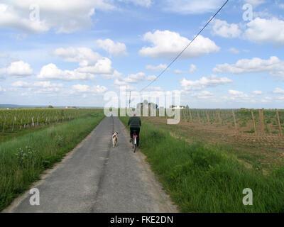 Eine Frau, die ihren Hund während der Fahrt mit dem Fahrrad auf einer ruhigen Landstraße. - Stockfoto