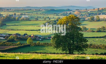Herbstfärbung im Tal rund um Milborne Wick, Somerset, England, UK - Stockfoto