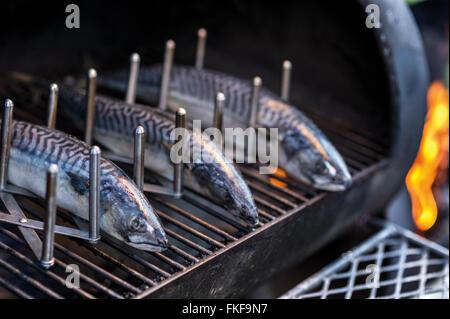 Fisch auf dem grill - Stockfoto