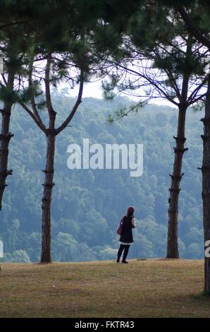 Frau stehend auf der Klippe zwischen Kiefer - Stockfoto
