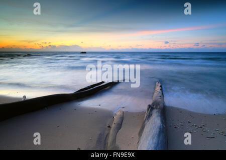 Treibholz am Strand bei Sonnenuntergang, Sabah, Borneo, Malaysia - Stockfoto