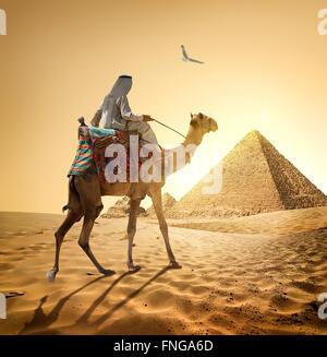 Beduinen und Vogel in der Nähe von Pyramiden in Wüste - Stockfoto