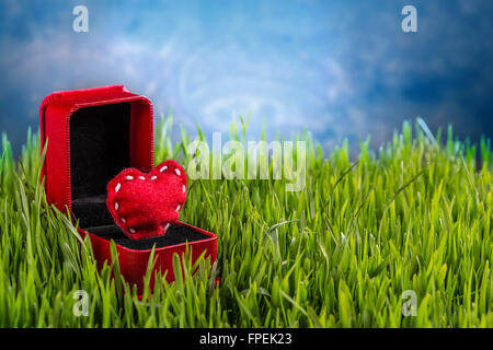 Liebe-Konzept. Filz Herzen im Ring-box - Stockfoto