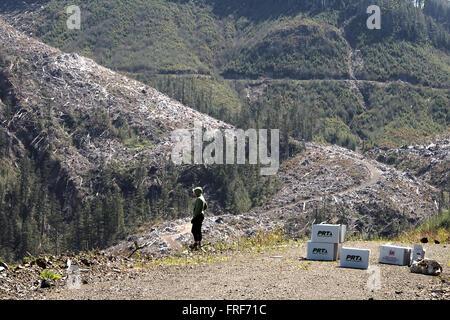Extreme Pflanzen - 16.05.2012 - Kanada - schneidet den Vordergrund Mensch vor einigen klaren später umgepflanzt - Stockfoto