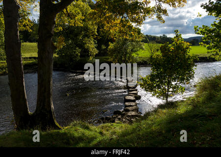 Steinige Stoop Lane stepping stones auf dem Fluß Ure, in der Nähe von Aysgarth, Wensleydale, Yorkshire Dales National - Stockfoto