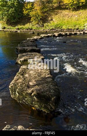 Steinige Stoop Lane stepping stones auf dem Fluß Ure, in der Nähe von Aysgarth, Wensleydale, Yorkshire Dales National - Stockfoto