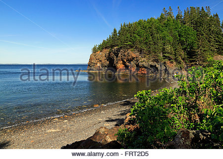 Eulen Kopf, Maine, USA - Stockfoto