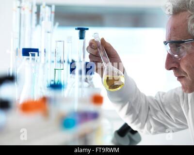 EIGENTUM FREIGEGEBEN. -MODELL VERÖFFENTLICHT. Wissenschaftler halten einer chemischen Lösung besteht in einem Kolben - Stockfoto