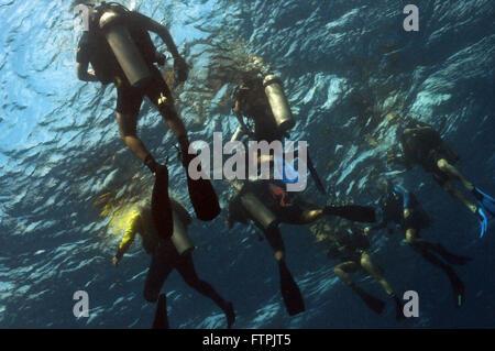 Unterwasser-Bilder an der brasilianischen Küste - Freizeit Tauchen in Fernando De Noronha - Stockfoto