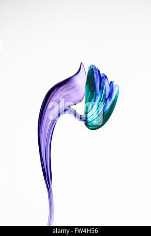 Ein digital manipulierte Bild einer Tulpe vor einem weißen Hintergrund - Stockfoto