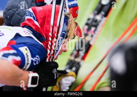 Nove Mesto Na Morave, Tschechische Republik - 23. Januar 2016: FIS Cross Country World Cup, Frauen 10 km. - Stockfoto