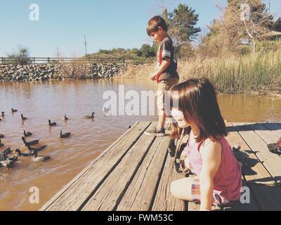 Geschwister an einem Anlegesteg mit Blässhühner In Teich - Stockfoto