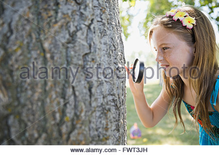 Kleines Mädchen Baumrinde durch Lupe betrachten - Stockfoto