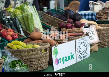 Bio-Obst und Gemüsemarkt stall. Wells, Somerset, England - Stockfoto