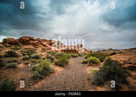 Trail für Wanderer führt zwischen rotem Sandstein Felsformationen in der Wüste von Südnevada. - Stockfoto