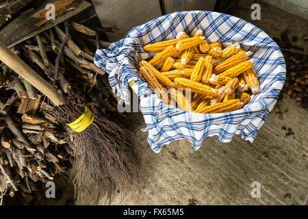 Gelb gefärbte Bio roh-Mais Maiskolben in einem Korb in eine dunkle Getreidespeicher - Stockfoto